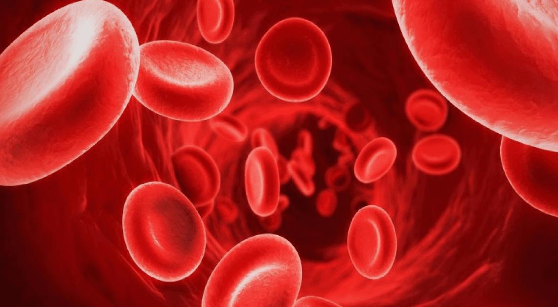 15 aprile 2019 – Giornata Mondiale dell'Emofilia le novità terapeutiche