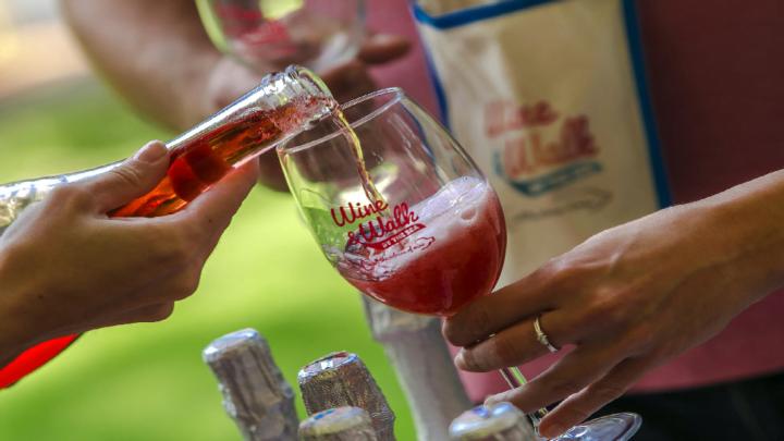 Istria e la Festa di San Martino con il vino di Momiano