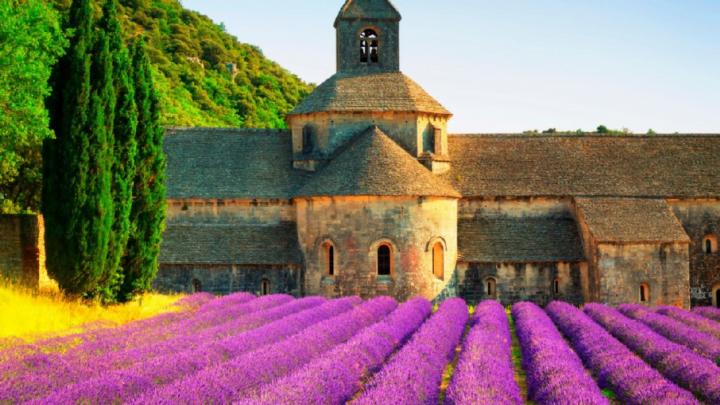 Nel sud-est della Francia: la Provenza è una tra le regioni più belle d'Europa
