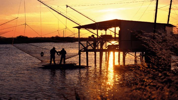 Alla scoperta del Parco marino dell'Adriatico: escursioni nella laguna di Venezia