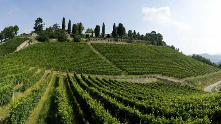 Vini eroici. Pioggia di medaglie per l'Italia al Mondial des Vins Extrêmes. Fra le regioni svetta Lombardia, molto bene Valle d'Aosta e la provincia di Trento. Ottimo il risultato dei vini piemontesi.